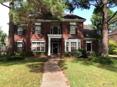 Houston Single Family Home For Sale: 4402 Deerfield Village Drive