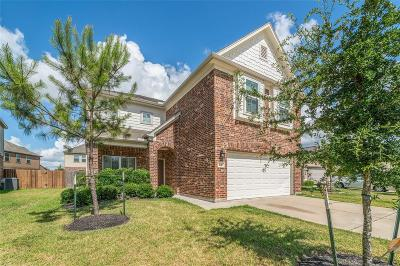 Houston Single Family Home For Sale: 4911 Climbing Ivy Circle