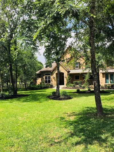 Magnolia Single Family Home For Sale: 10507 Crystal Cove Drive