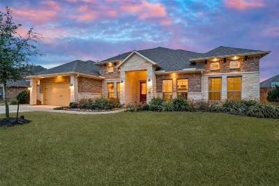 Single Family Home For Sale: 40632 Damuth Drive