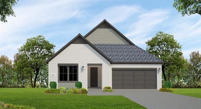 Houston Single Family Home For Sale: 3619 Greenbriar Meadow Lane