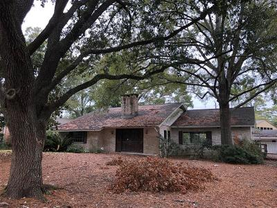 Houston Single Family Home For Sale: 10106 Green Tree Road