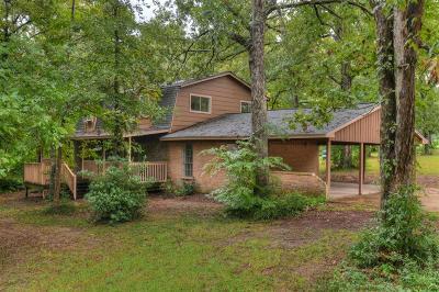 Conroe Single Family Home For Sale: 10541 Champion Village Drive