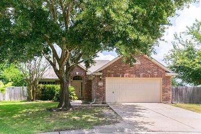 Single Family Home For Sale: 8754 Willancy Lane