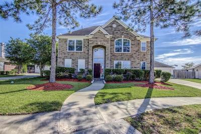 Dickinson Single Family Home For Sale: 117 Smokey Lake Lane