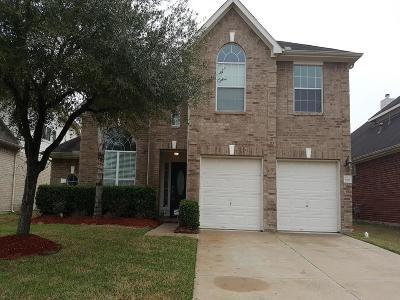 Houston Single Family Home For Sale: 8311 Sonesta Point Lane
