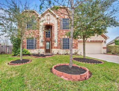Lakes Of Savannah Single Family Home For Sale: 5204 Amber Sky Lane