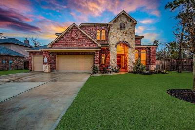 Single Family Home For Sale: 14204 S Crater Lake Court