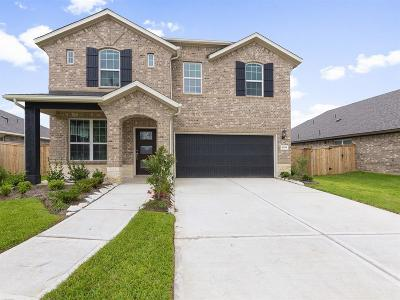 Pearland Single Family Home For Sale: 2009 Shim Ball Way