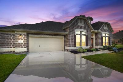 Baytown Single Family Home For Sale: 4403 Clearwater Drive
