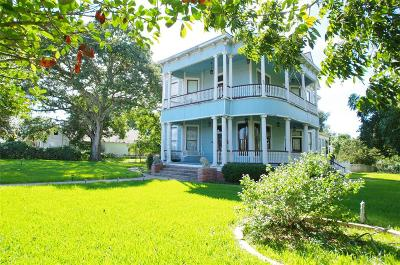 Bellville Single Family Home For Sale: 219 South Live Oak