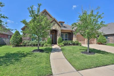 Pearland Single Family Home For Sale: 12102 Linden Walk Lane