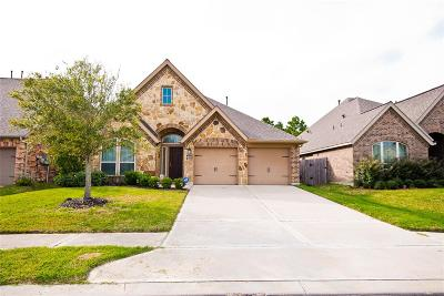 Pearland Single Family Home For Sale: 2512 Mountain Sage Drive