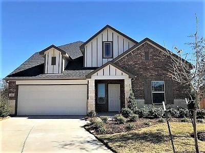 Rosenberg Single Family Home For Sale: 202 Goose Barnacle Lane