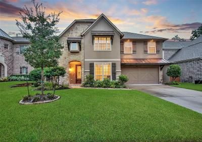 Conroe Single Family Home For Sale: 1010 Holly Chapple Drive