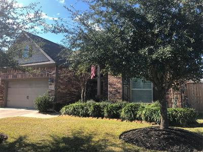 Cypress Single Family Home Option Pending: 16711 Curio Gray Trail