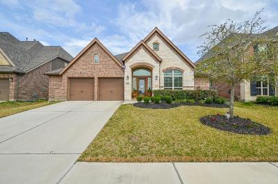 Katy Single Family Home For Sale: 23318 Perla Verde Terrace Circle