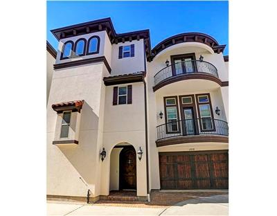 Houston Single Family Home For Sale: 1312 Hawthorne