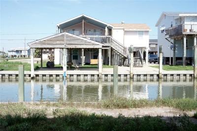 Surfside Beach Single Family Home For Sale: 310 Shark Lane