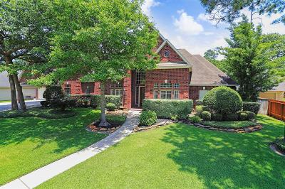 Houston Single Family Home For Sale: 13710 Champions Centre Drive