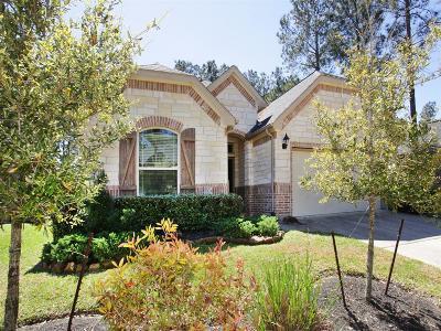 The Woodlands Single Family Home For Sale: 15 Sawbridge Cir