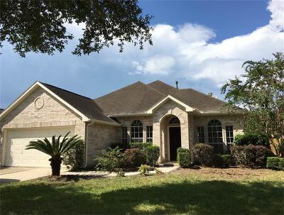 Houston Single Family Home For Sale: 13139 Broncroft Court