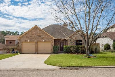 Willis Single Family Home For Sale: 12464 Lake Visa Dr