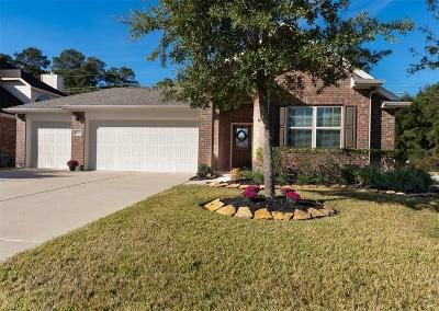 Tomball Single Family Home For Sale: 24227 Rocky Brook Falls