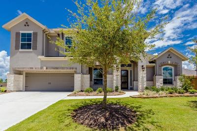 Tomball Single Family Home For Sale: 9206 Tracewood Canyon