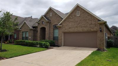 League City Single Family Home For Sale: 4513 Bonita Way