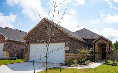 Conroe Single Family Home For Sale: 16825 Pink Wintergreen