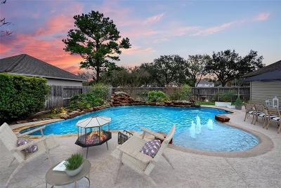 Sugar Land Single Family Home For Sale: 3938 Bratton Street