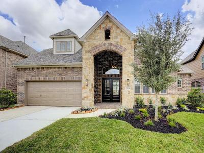 Cypress Single Family Home For Sale: 9514 Whitebark Pine Way