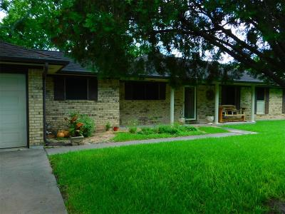 Fort Bend County Farm & Ranch For Sale: 19547 Fm 762