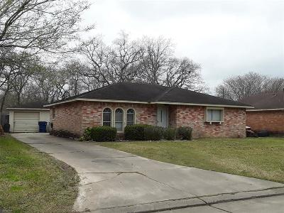 Angleton Single Family Home For Sale: 1306 Northview Court