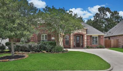 Shenandoah Single Family Home For Sale: 28954 Twisted Oak Drive