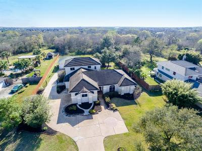 Friendswood Single Family Home For Sale: 2202 Airline Drive