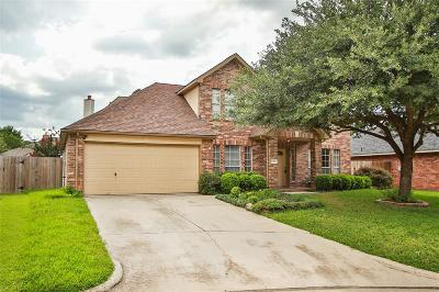 Tomball Single Family Home For Sale: 13515 Country Circle