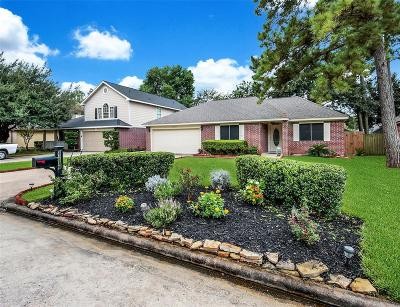 Tomball Single Family Home For Sale: 22539 August Leaf Drive