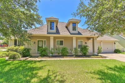Tomball Single Family Home For Sale: 22203 Windy Brook Lane