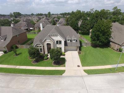 Houston Single Family Home For Sale: 13914 Lake Benbrook Drive