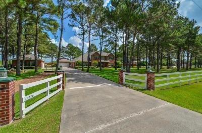 Katy Single Family Home For Sale: 28026 Rose Lane