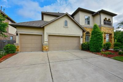 Sugar Land Single Family Home For Sale: 4734 Burclare Court