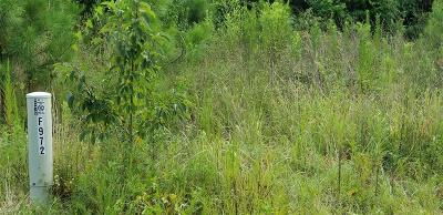 Residential Lots & Land For Sale: 972 Road 3405