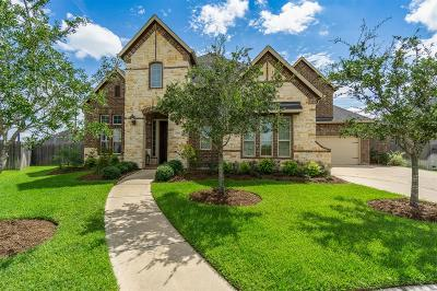 Katy Single Family Home For Sale: 27510 Meeks Bay Court