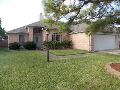 Houston Single Family Home For Sale: 9330 Marblemount Drive