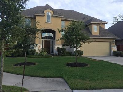 Porter Single Family Home For Sale: 22722 Soaring Woods Lane