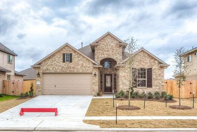 Cypress Single Family Home For Sale: 11839 Trinity Bluff