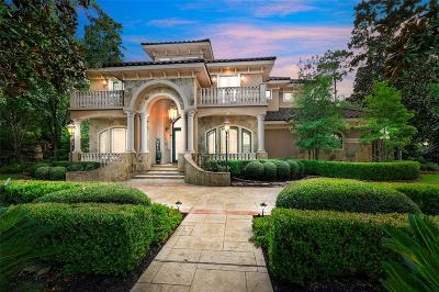 The Woodlands Single Family Home For Sale: 35 Hildene Way