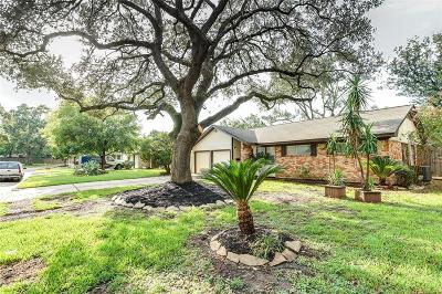 Houston Single Family Home For Sale: 9622 Carousel Lane